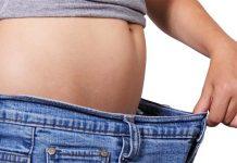 肥満対策と腸内細菌の関係