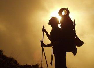 肥満対策や安全に登山おすすめストック