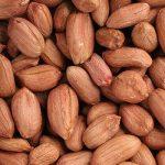 生ピーナッツ(500g) - 28年産 千葉県産 国産 本場八街の新豆です♪ 3