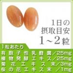 有胞子性乳酸菌ソフトカプセル (菊の花エキス、桜の花エキス、野草酵素を配合!!)